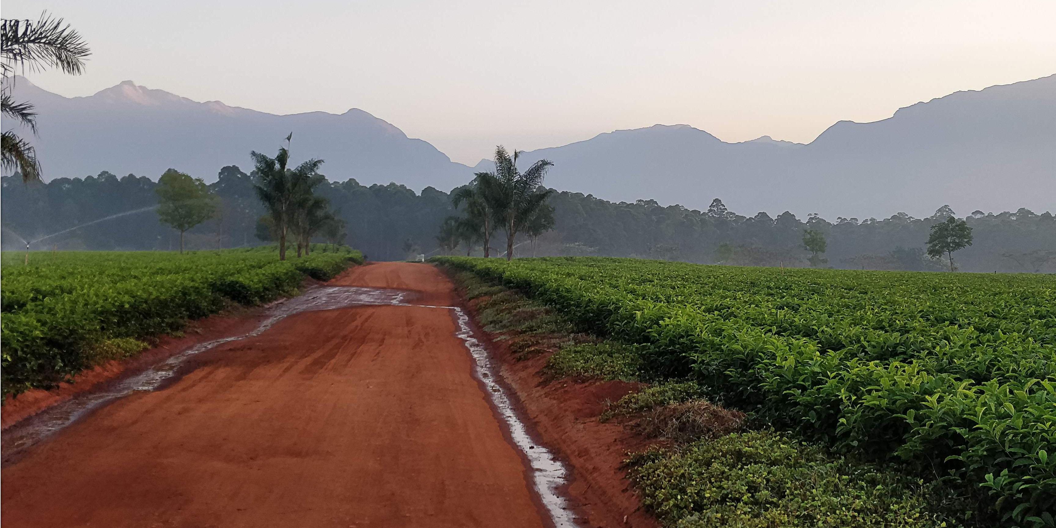 Blog_Fairtrade